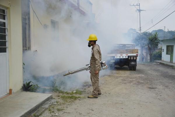 Jalisco y Veracruz, primeros lugares en casos de dengue