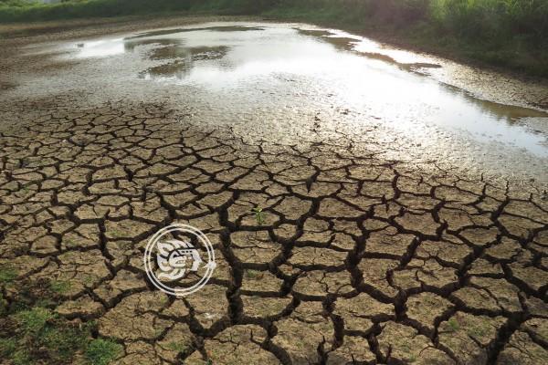 Grave sequía en 2020 amenaza a Veracruz, alerta Cuitláhuac