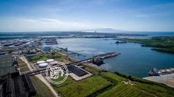 Removerán manglares en Terminal Marítima de Pajaritos tras ampliaciones