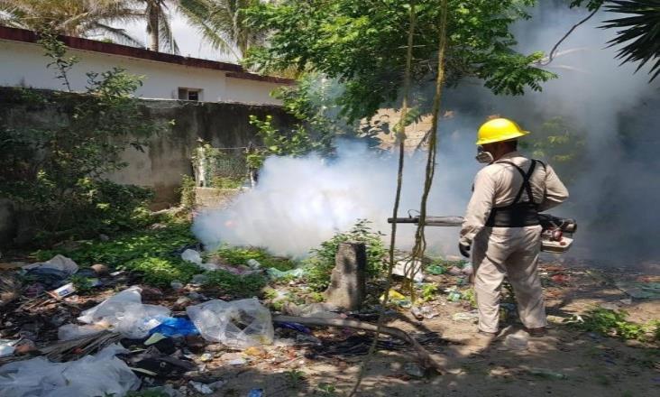 Veracruz, a la cabeza de dengue en el país con 774 casos
