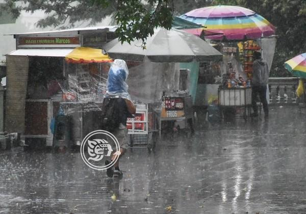 Fuertes lluvias dejan estragos en 7 municipios de Veracruz