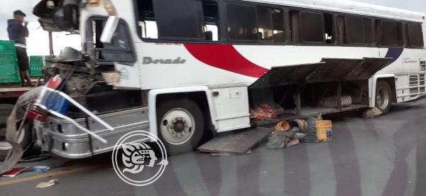 Choca autobús de turismo con tráiler en Maltrata