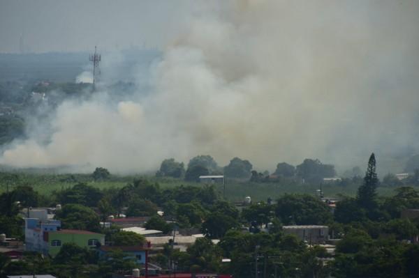 Ante fuertes temperaturas en Coatzacoalcos, se incendia pastizal en medio de pantano