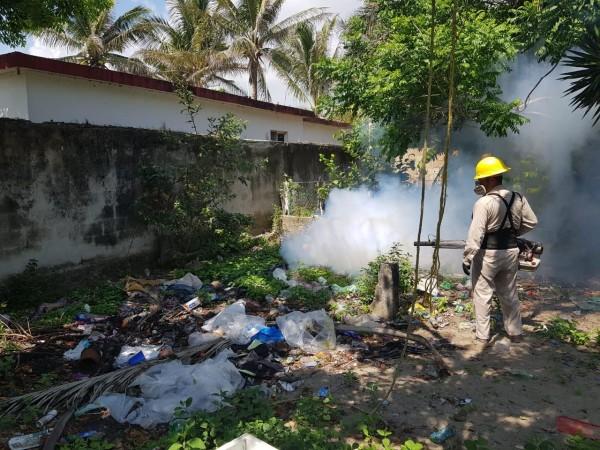 Por casos de dengue, Xalapa foco rojo: IMSS