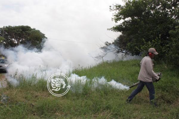 Sesver no registra posible epidemia de dengue en Las Choapas