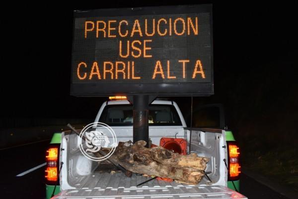 En autopista del sur de Veracruz hampa opera con impunidad