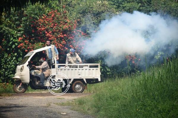 Veracruz, con 1 muerte y 702 casos confirmados de dengue