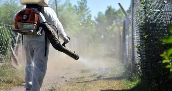 Menor, incidencia de dengue en Veracruz respecto a 2019