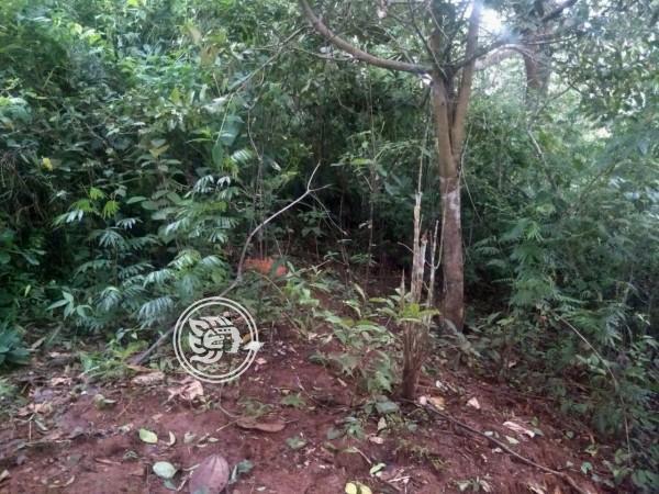 Localizan restos en Soteapan; desapareció hace casi 2 meses