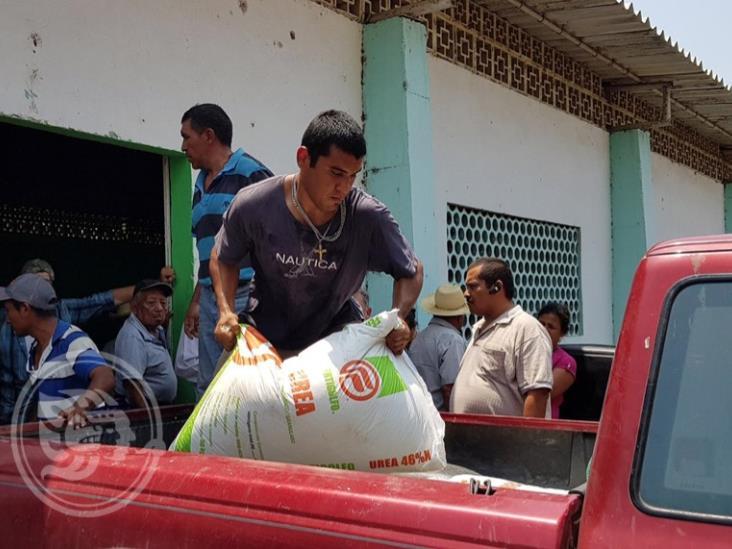 Repartirá federación 340 toneladas de maíz en el sur de Veracruz