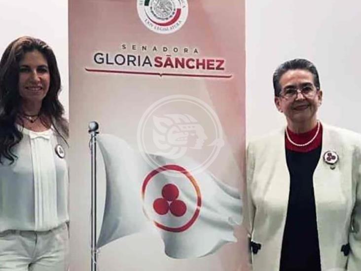 Bandera de la Paz, es promovida por Laura Robles
