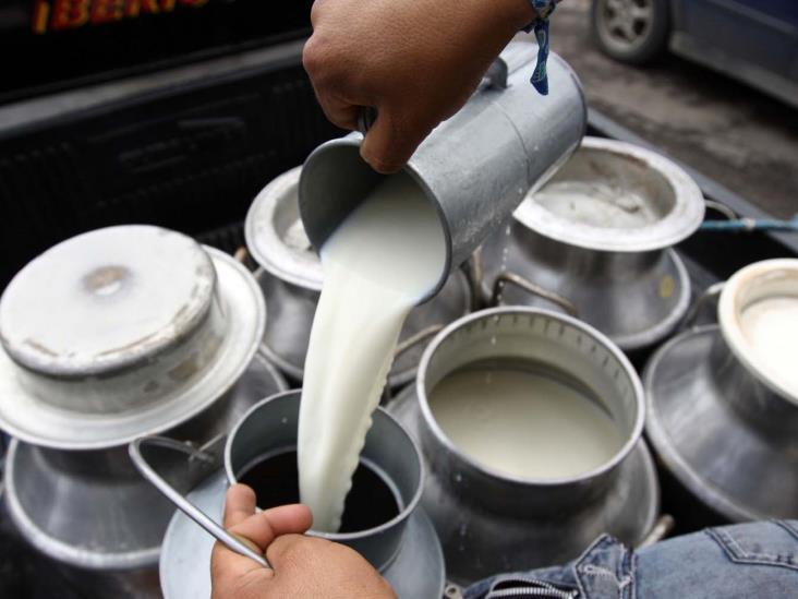 Adeuda Liconsa 9.5 mdp a lecheros veracruzanos