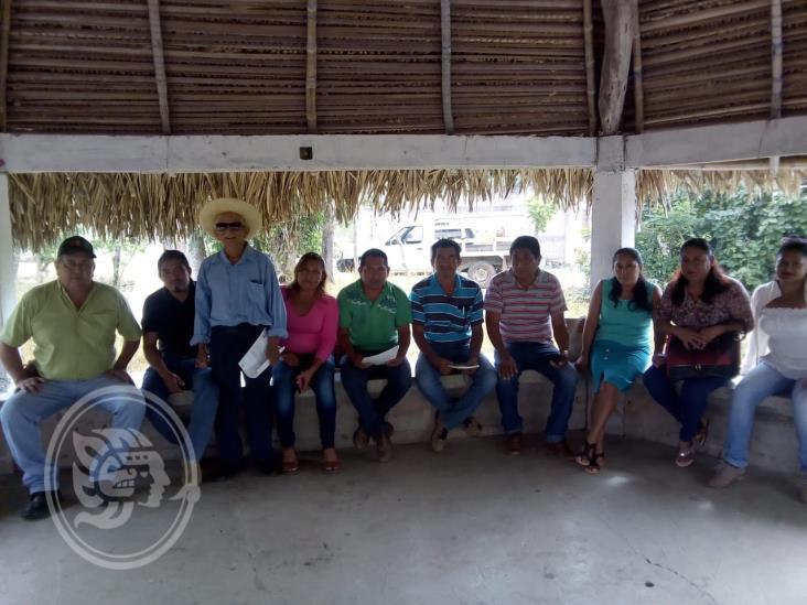 Aplican faenas en campos agrícolas de Cosoleacaque