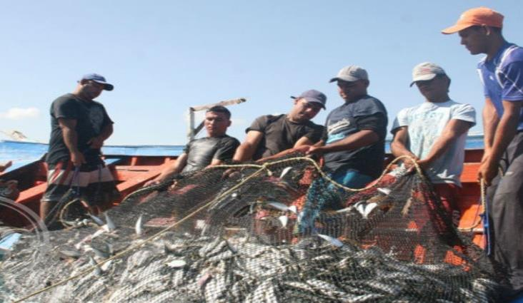 Avanza en 73% entrega de apoyos para pesca en Golfo de México