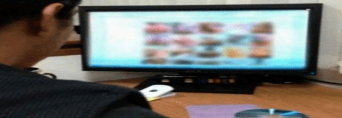 Perú: 10 detenidos por integrar red internacional de pornografía infantil