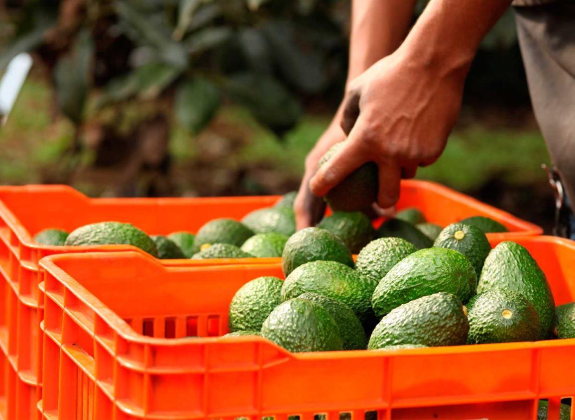 Empresarios mexicanos, preocupados por ajuste al TMEC que podría frenar exportaciones