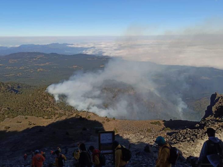 Controlado, 75% del incendio en el Cofre de Perote; dañadas 45 hectáreas