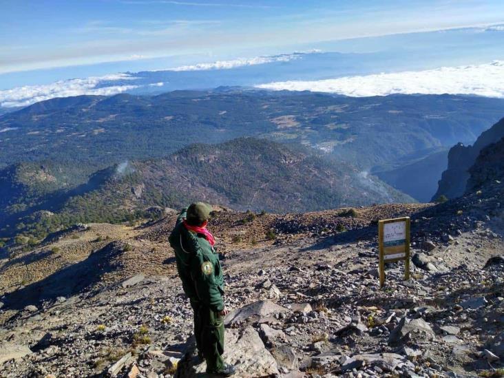 Controlado en un 90% el incendio del Parque Nacional Cofre de Perote
