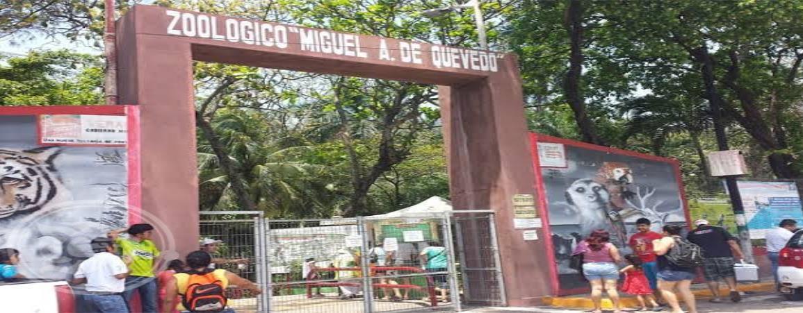 Acusan maltrato a animales en el zoológico de Veracruz