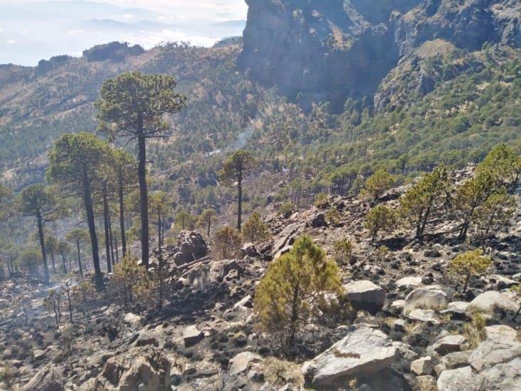 Incendio forestal forestal de  Cofre de Perote ha sido liquidado