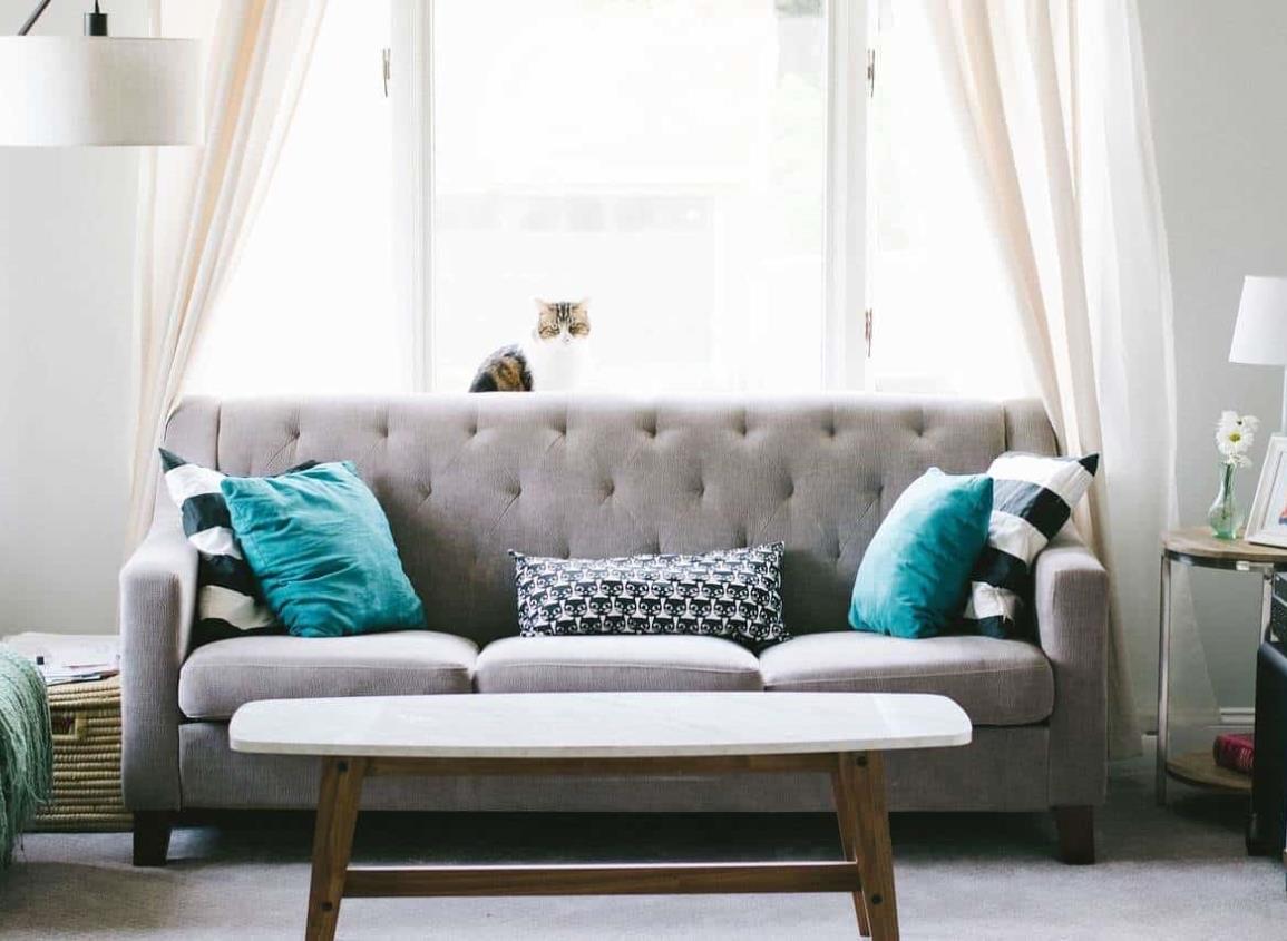 ¡Es hora de renovar tu sofá! Averigua cómo seleccionar el merjor