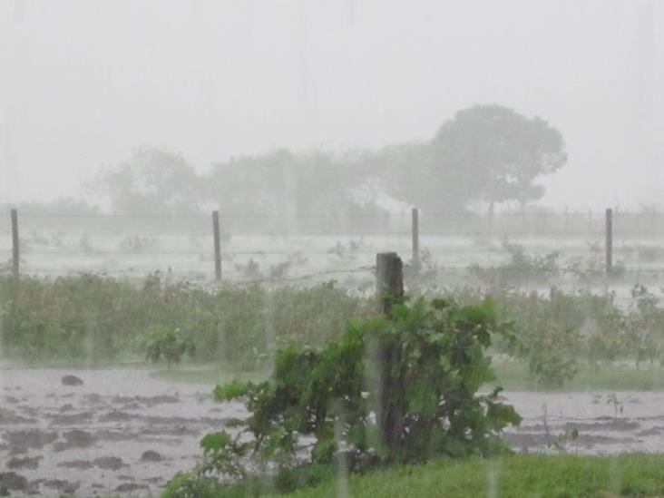 Lluvias de febrero ayudarán a disminuir sequía, espera SPC