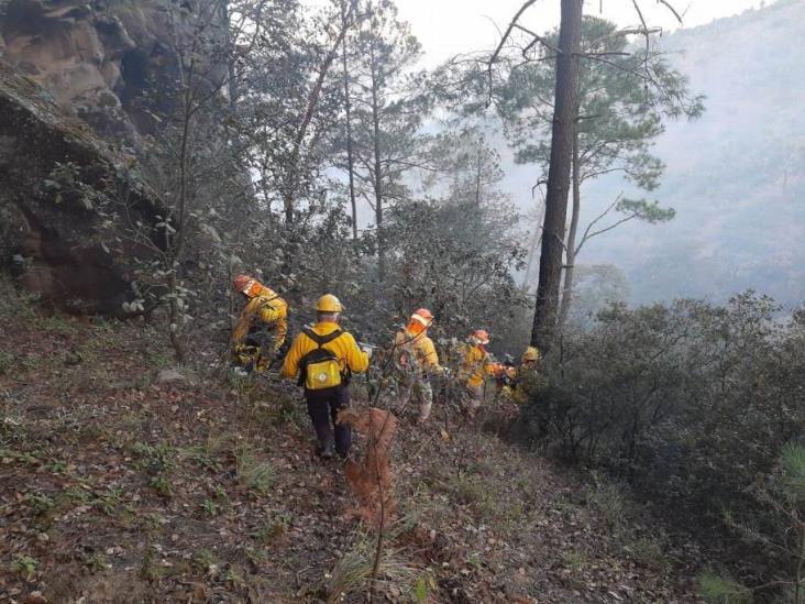 Reportan 100% de control y 70% de liquidación de incendio en La Gloria