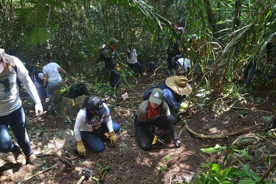 Falta de reactivos entorpece identificaciones de desaparecidos en Veracruz