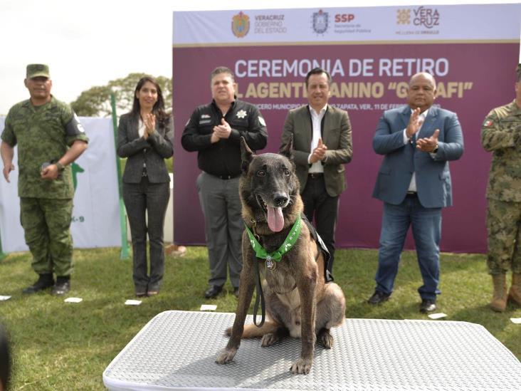 Con honores, retira Fuerza Civil al agente canino ´Gadafi´ tras 8 años de servicio
