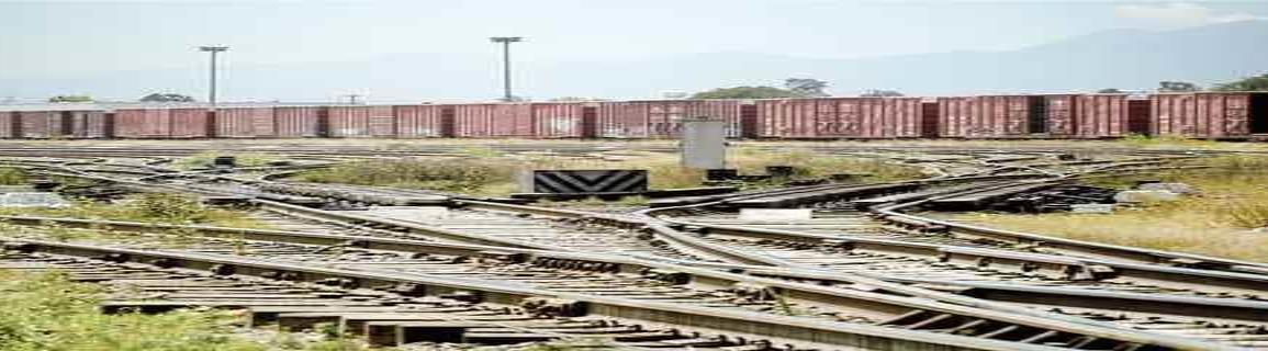 Falta de Manifiesto Ambiental detiene rehabilitación de vías férreas