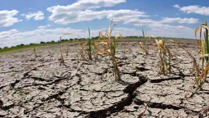 Sequía da tregua a Veracruz; sólo 9 con severa problemática