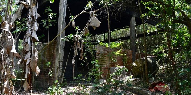 Ven pasividad de Gobierno de Veracruz ante ´cocinas´ del narco en La Gallera