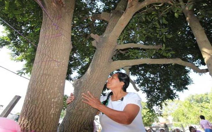 Mujer se casa... con árbol en el norte de Veracruz