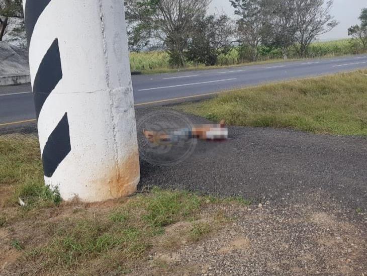 Dejan cuerpo en autopista La Tinaja-Cosoleacaque