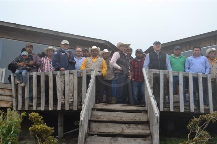 Llaman a cuidar el Pico de Orizaba; deforestación es grave