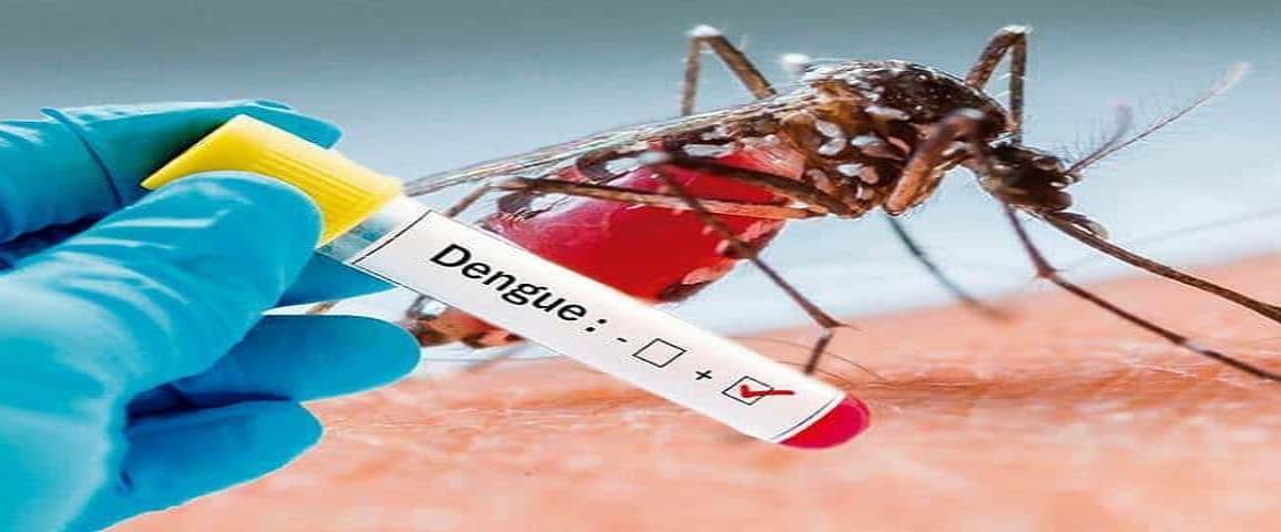Veracruz se ubica como el estado líder en casos de dengue desde 2019