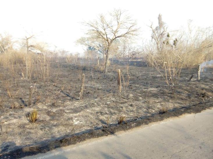 Se incendia pastizal en Jamapa