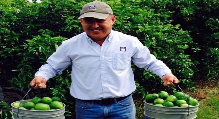 Exitosa producción de limón en sierra sur de Veracruz; buscan comercializarlo