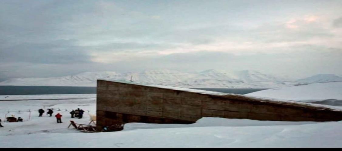 Añaden 60 mil semillas al bunker del Ártico