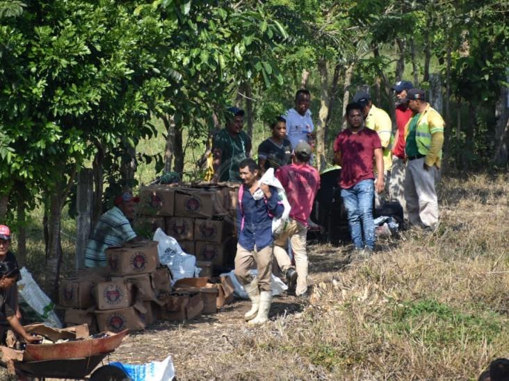 Choca tráiler cargado de cerveza en Acayucan;  la rapiña no se hizo esperar
