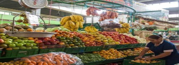 Estas son las medidas para garantizar la producción y abasto de alimentos en el país
