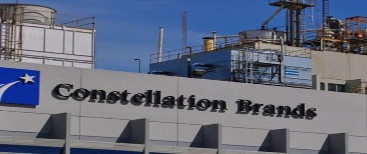 Hubo corrupción e influyentismo en permisos a Constellation Brands: AMLO