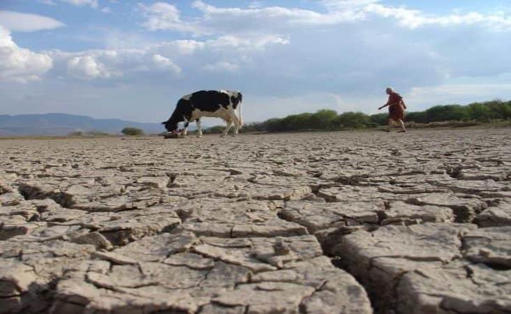 Veracruz, el más afectado por lluvias desde el año pasado