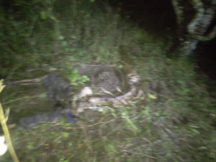 Encuentran cuerpo en estado de descomposición en carretera Martínez-San Rafael