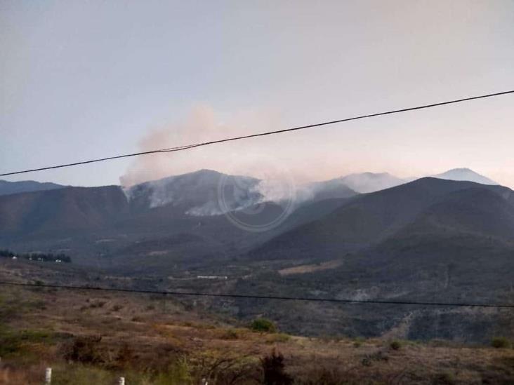 Incendio ha consumido hasta 250 hectáreas en Acultzingo