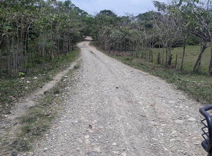 Pobladores rehabilitan caminos de Las Choapas con sus propios recursos