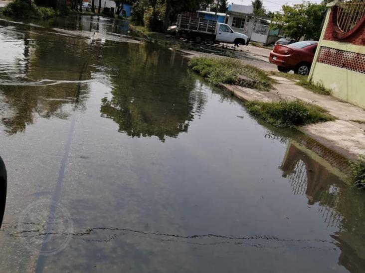 Gran foco de infección por aguas negras al poniente de Coatzacoalcos