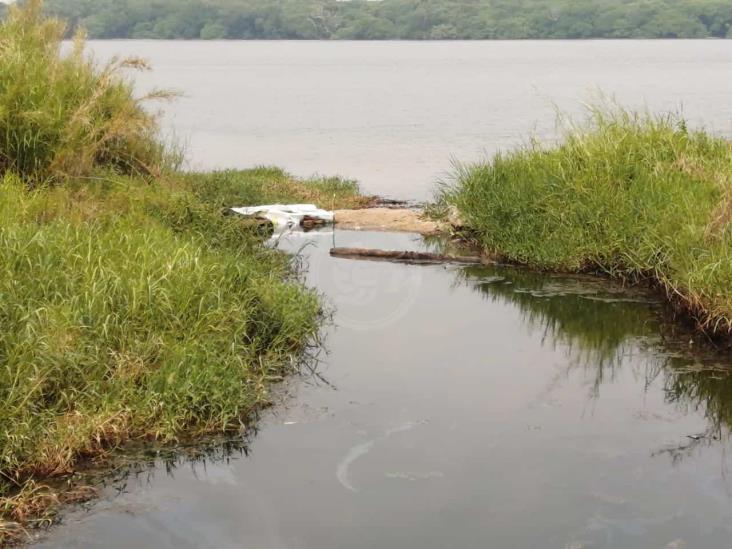Contaminación del arroyo Gopalapa no ha sido saneada