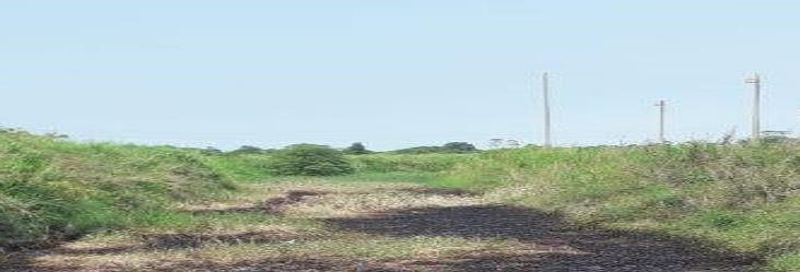 Planta procesadora de asfalto arrojó desechos en arroyo de Nanchital