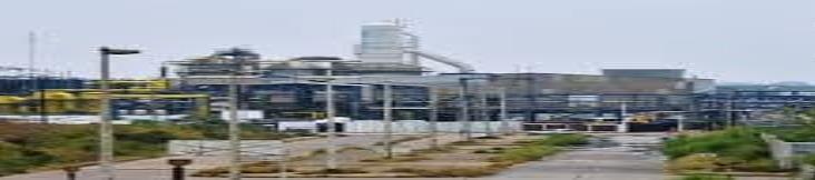 Trabajadores de la zona industrial, libres del Covid-19